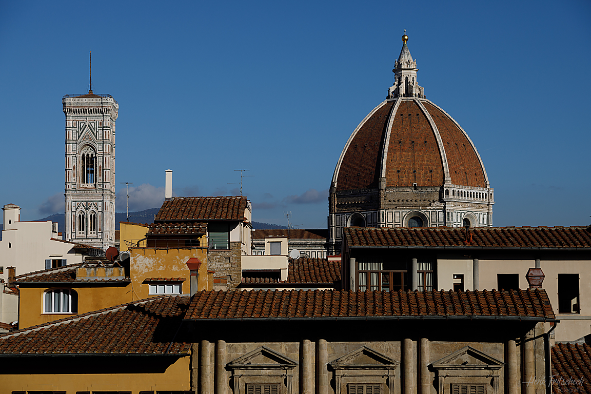 Florence-6547