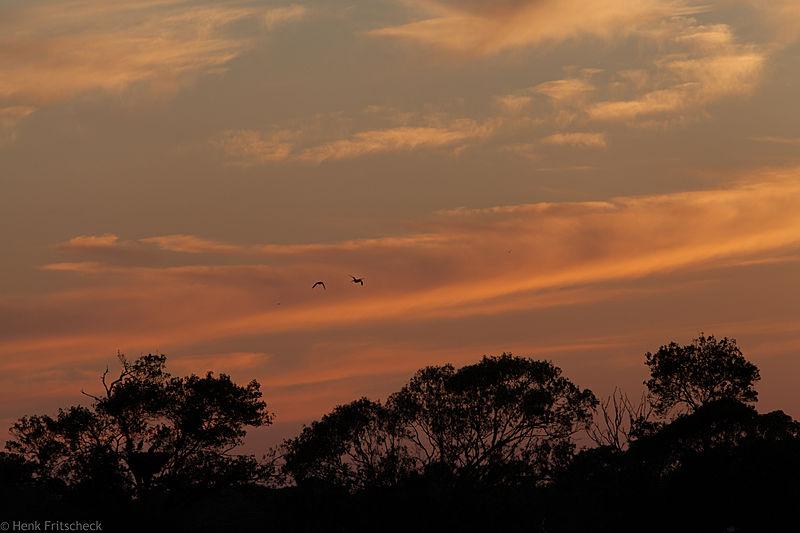 Avond over de Algarve